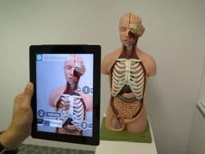 Augmented Reality Used To Explain Human Anatomy In an Interactive Way