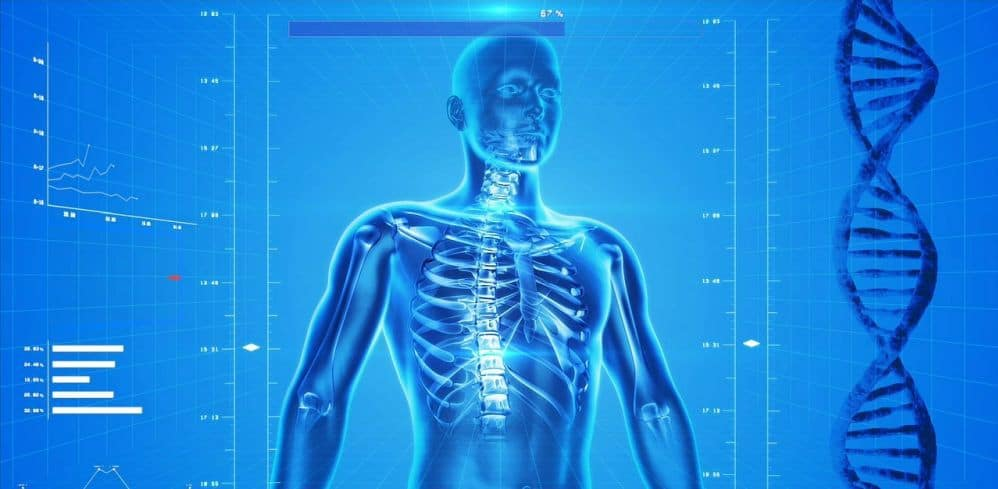 Human Anatomy - Applications Of Virtual Reality In Medicine