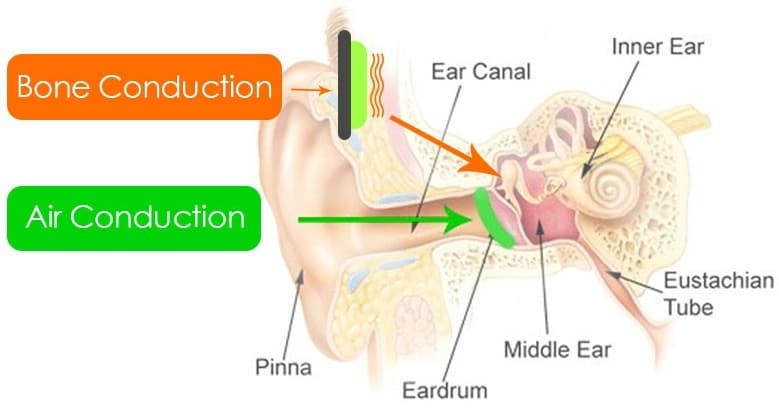 Smart Glasses Often Use Bone Conduction A a Means to transfer Audio. Diagram of Bone Conduction